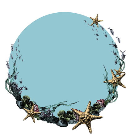 Frame nautical theme corals stars in the circle sketch. Vector graphics, color picture.