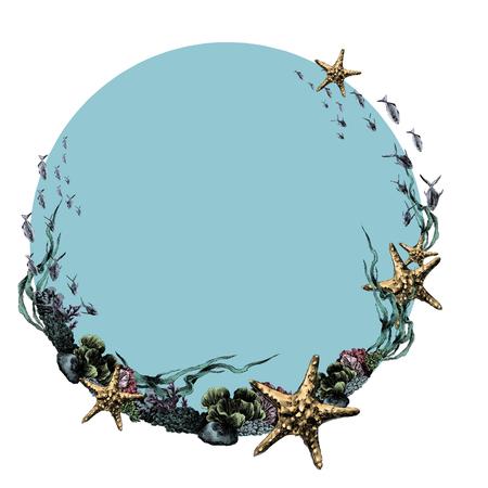Marco náutico tema corales estrellas en el bosquejo del círculo. Gráficos vectoriales, imagen en color. Foto de archivo - 95810626
