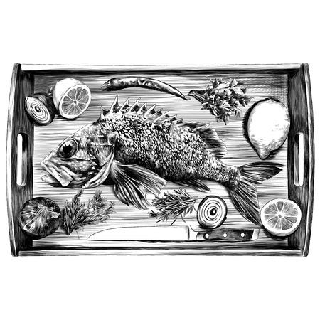 grouper lemon pepper parsley onion knife green sketch vector graphics monochrome black-and-white drawing Illustration