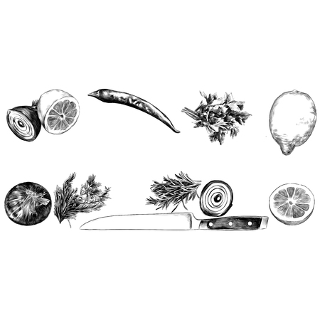 lemon pepper parsley onion knife green sketch vector graphics monochrome black-and-white drawing Imagens - 95674890