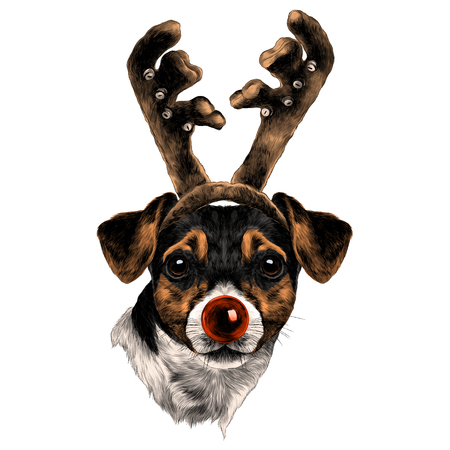 dog Jack Russell Terrier head with horns and nose of a new year sketch vector graphics color drawing