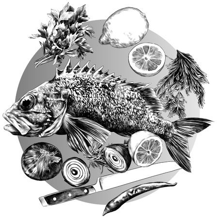 grouper lemon pepper parsley onion knife green sketch vector graphics monochrome black-and-white drawing 向量圖像