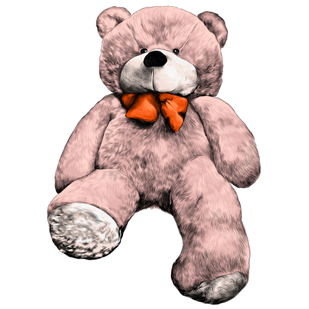 bear plush toy soft sketch vector graphics color picture