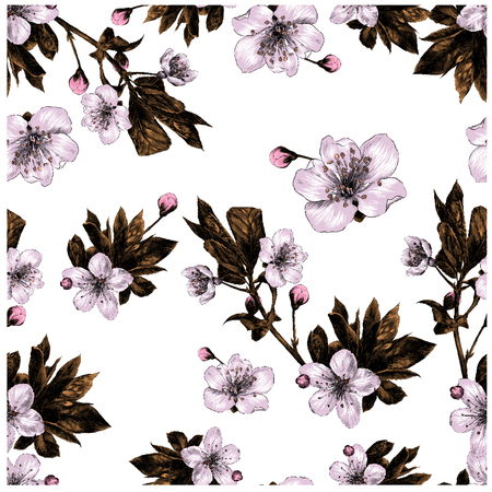 branches of Apple flowers seamless pattern colored drawing Ilustrace