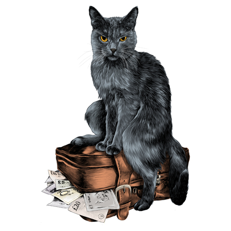 the cat with the money sketch vector graphics color picture Illustration