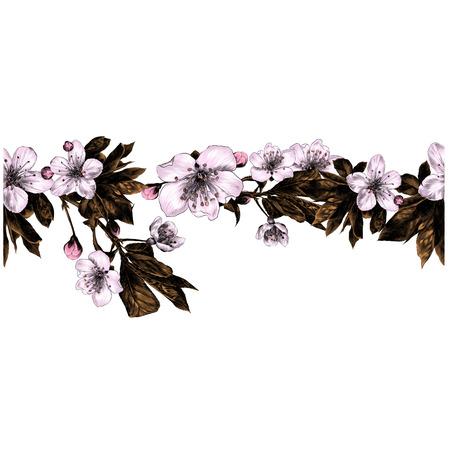 アップルの花の枝パターンシームレスなストリップフレームライン色描画スケッチベクトルグラフィックス  イラスト・ベクター素材
