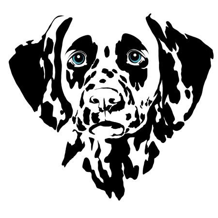 Dalmatian dog head sketch vector graphics color picture Stock Illustratie