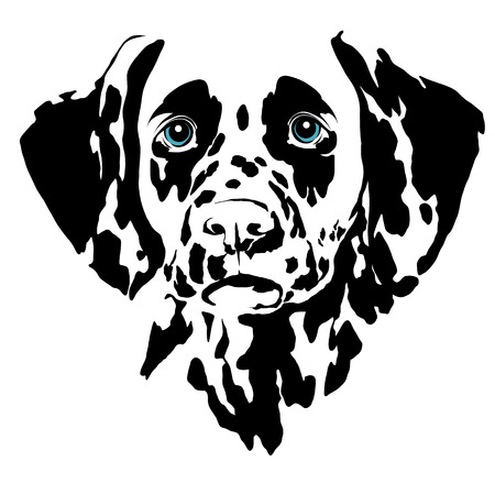 Dalmatian dog head sketch vector graphics color picture Illustration