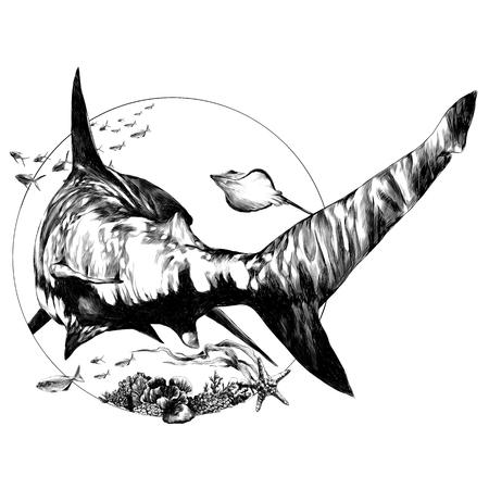 Hai-Skizze für ein T-Shirt zurück Vektorgrafiken monochrome Schwarz-Weiß-Zeichnung Vektorgrafik