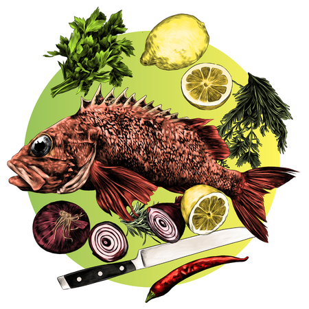 grouper lemon pepper parsley onion knife green sketch vector graphics color drawing