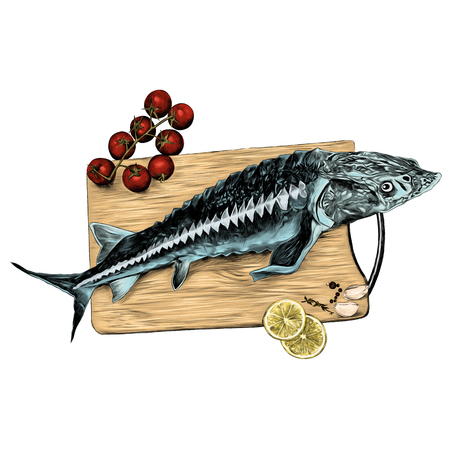 tomaten citroen knoflook kruiden snijplank vis steur schets vectorafbeeldingen kleurenafbeelding