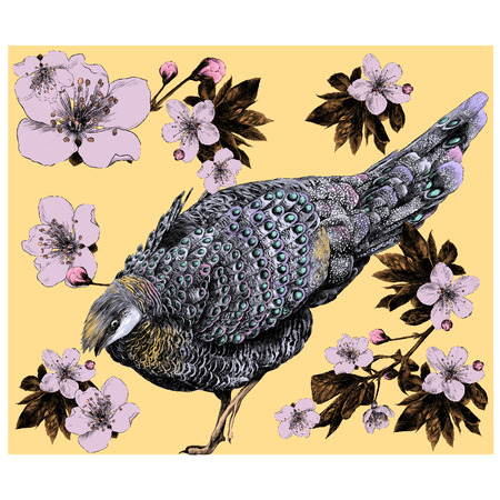 Bird with flowers and shoots of Apple tree branch sketch vector graphics color figure