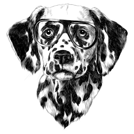 Dalmatians glasses sketch. Vector graphics monochrome, black-and-white drawing.