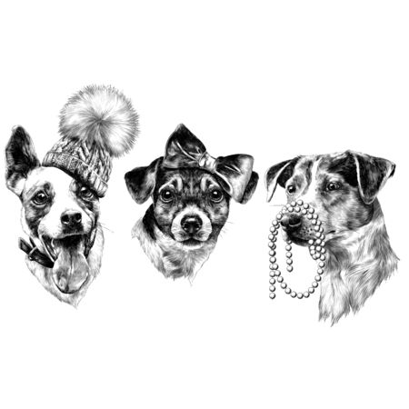 Three dogs Jack Russell Terrier a set of Christmas gifts accessories, fashion sketch. Vector graphics monochrome, black-and-white drawing.
