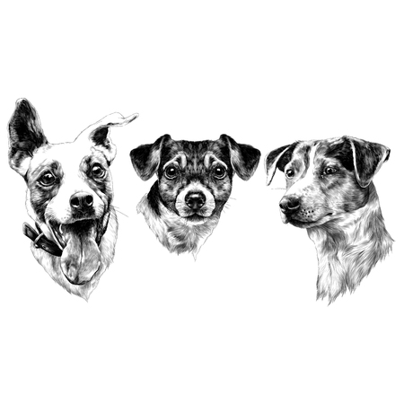 Three dogs Jack Russell Terrier a set of Christmas gifts, sketch. Vector graphics monochrome, black-and-white drawing. Vettoriali