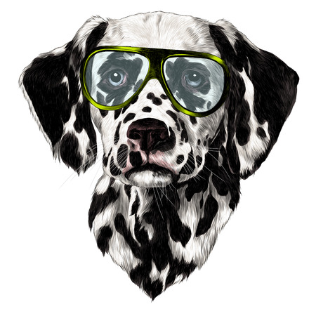 Dalmatians glasses, sketch. Vector graphics, color drawing.