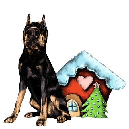 ぼろクリスマスハウススケッチベクターグラフィックカラー画像の隣にフルハイトに立っている犬の品種ドーベルマン