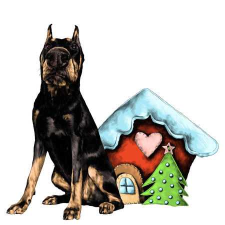 Dog breed Doberman standing at full height next to the rag Christmas house sketch vector graphics color picture