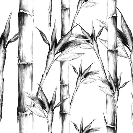 Hojas ramas tallo bambú patrón flores textura marco boceto gráficos dibujo en blanco y negro