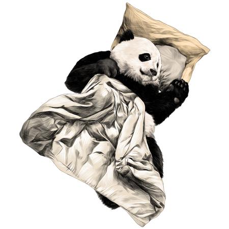 Panda lying under the blanket sketch vector graphics color illustration Illustration
