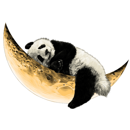 Panda lying on the Crescent moon sketch vector