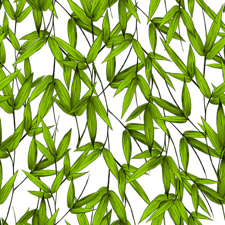 Leaves branches stem bamboo pattern flowers texture frame seamless sketch vector graphics color picture Stockfoto - 96185903