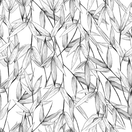 Leaves, branches, stem bamboo pattern flowers texture frame sketch graphics of black-and-white drawing