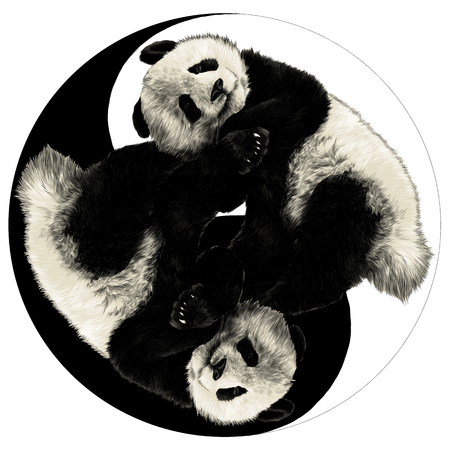 Zwei Pandas sind auf dem Zeichen Yin-Yang-Skizzengraphiken farbiges Bild Standard-Bild - 96262660