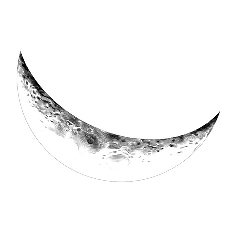 Moon Crescent sketch vector graphics monochrome drawing
