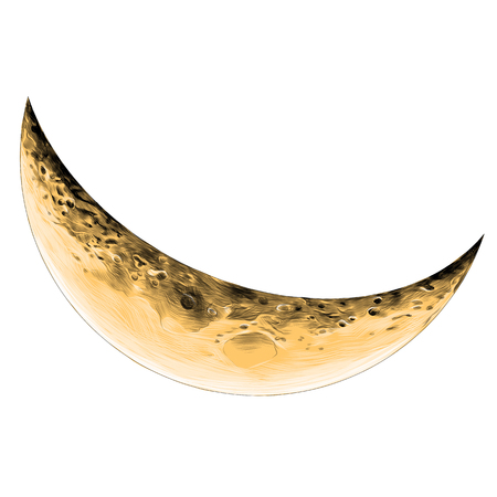 Moon Crescent sketch vector graphics color picture