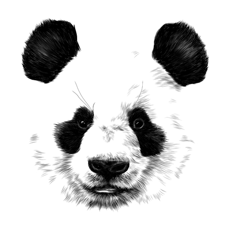 head Panda no outline in space sketch vector graphics monochrome drawing Ilustração