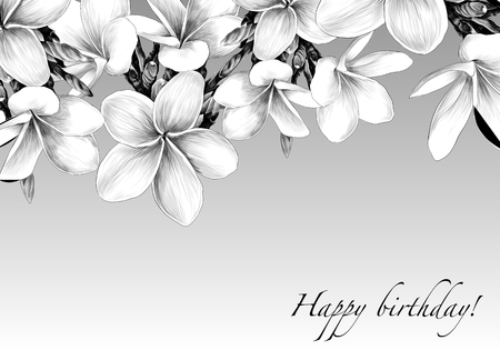 the postcard is decorated with Magnolia flowers sketch vector graphics monochrome drawing Çizim