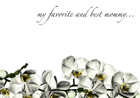 la carte est décorée de fleurs d & # 39 ; orchidée croquis croquis couleur image de couleur