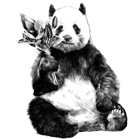 Panda sits with a bouquet in his paw. Sketch vector. Stok Fotoğraf - 95826334