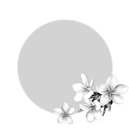 Round frame decorated with Magnolia flowers sketch vector graphics monochrome drawing