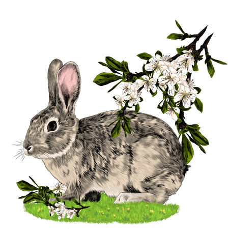 Bunny sitting on the grass next to the branches of the Apple tree sketch vector graphics color picture