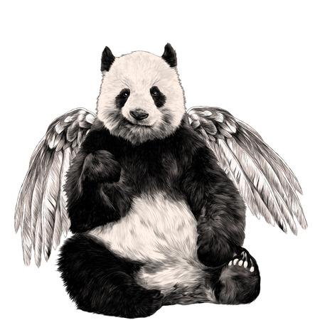 Panda avec des ailes assis croquis de couleur graphique Banque d'images - 96263804