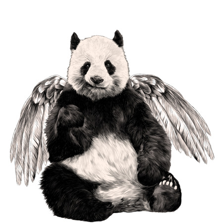 Panda with wings sitting sketch graphics colored picture Vettoriali