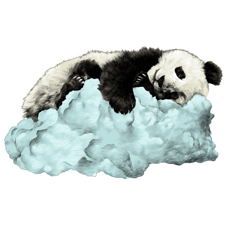 Panda sleeping on the cloud sketch vector graphics color picture