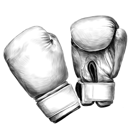 Boxing gloves sketch vector graphics monochrome black-and-white drawing