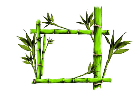 leaves branches stem bamboo pattern flowers texture frame seamless sketch vector graphics color picture Stockfoto - 95810263