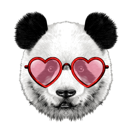 Head panda with glasses in heart shape sketch vector graphics color picture 일러스트