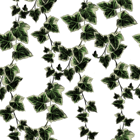 leaves branches stem bamboo pattern flowers texture frame seamless sketch vector graphics color picture Stockfoto - 95649956