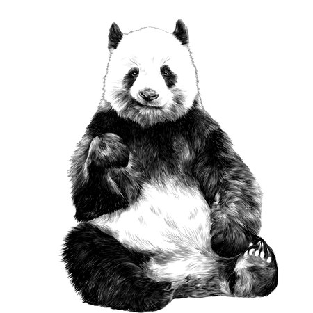 Grinning panda sitting figure in full-length sketch graphics of a black and white picture