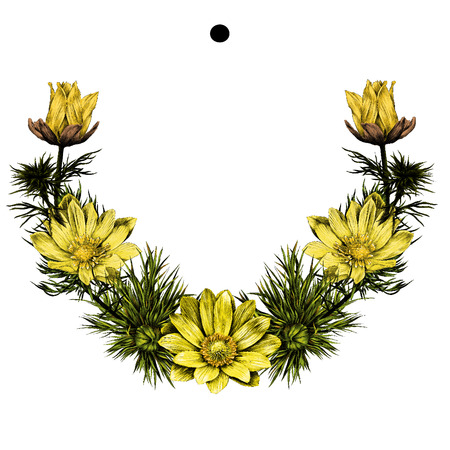 Frame a wreath of flowers Adonis in a circle sketch vector graphics color picture