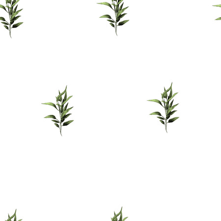 leaves branches stem bamboo pattern flowers texture frame seamless sketch vector graphics color picture