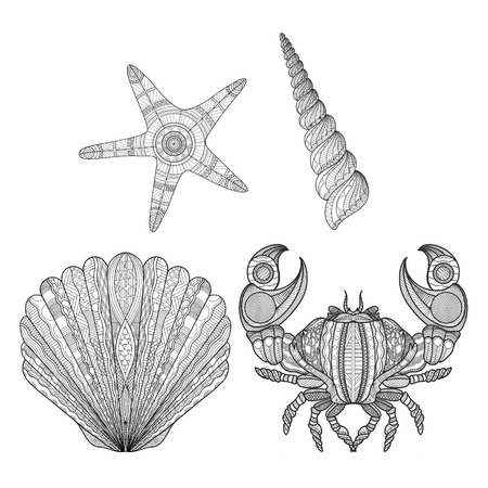 set of Doodle style illustrations starfish shells and crab