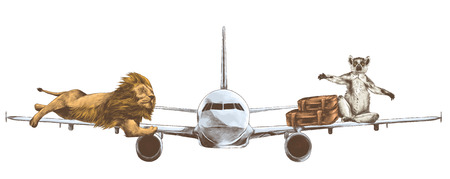 A tiger lying on the wing of a flying plane and lemur with retro suitcases on the other wing.