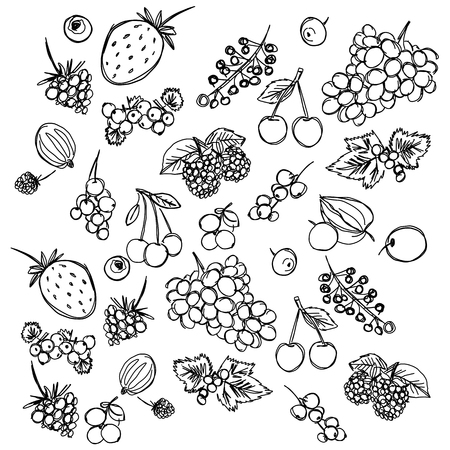 set of different berries painted in the style of childrens drawing fast by hand, sketch vector graphics monochrome drawing