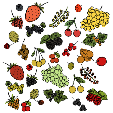 set of different berries painted in the style of childrens drawing fast by hand, sketch vector graphics colored drawing